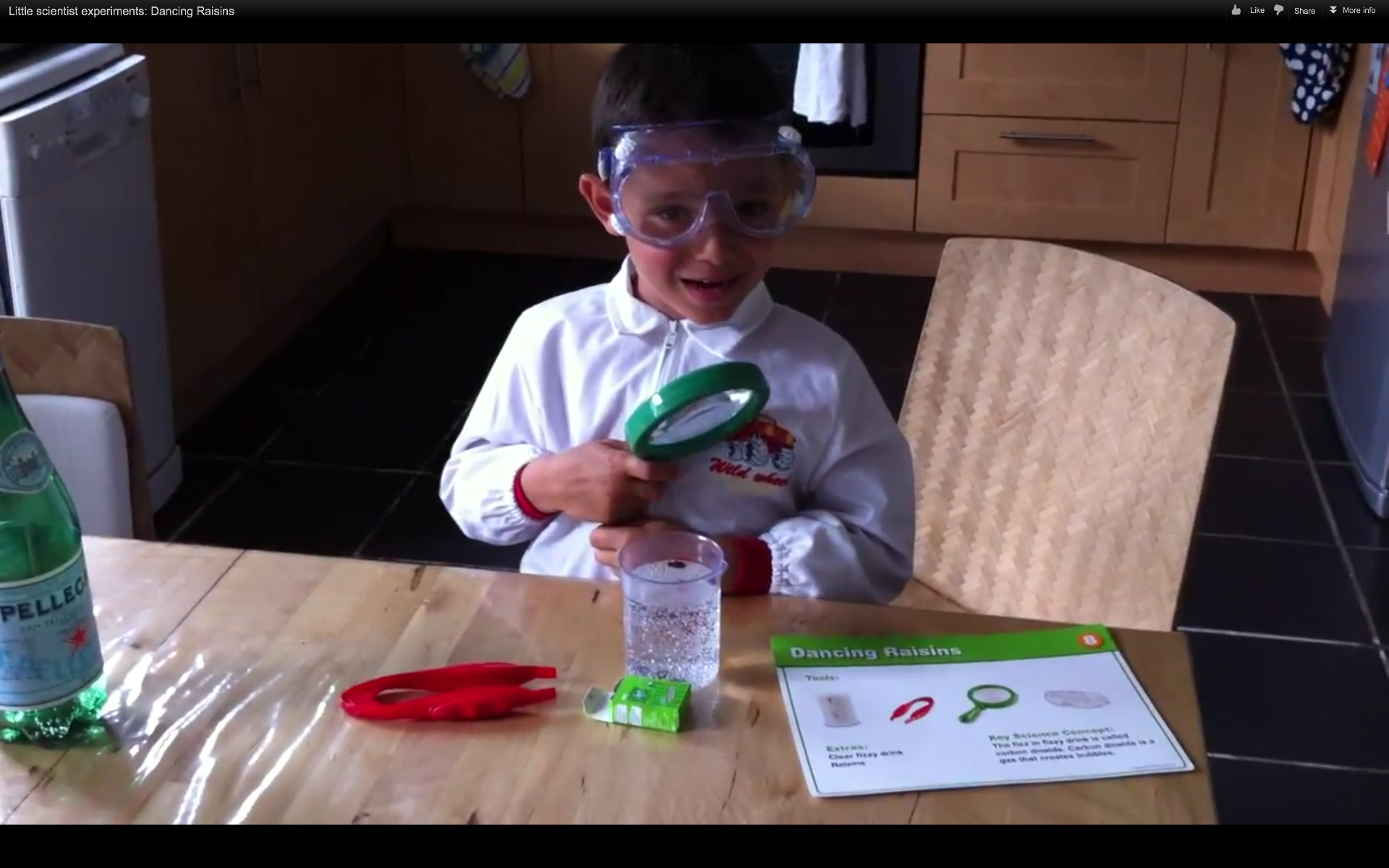 Little scientist experiments: dancing raisins