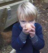 farm sunday image JUNE Newsletter
