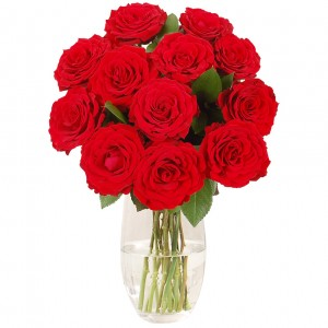Red roses for Valentine Day