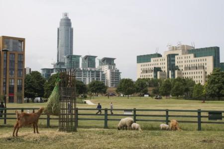 vauxhall city farm MI5 backdrop