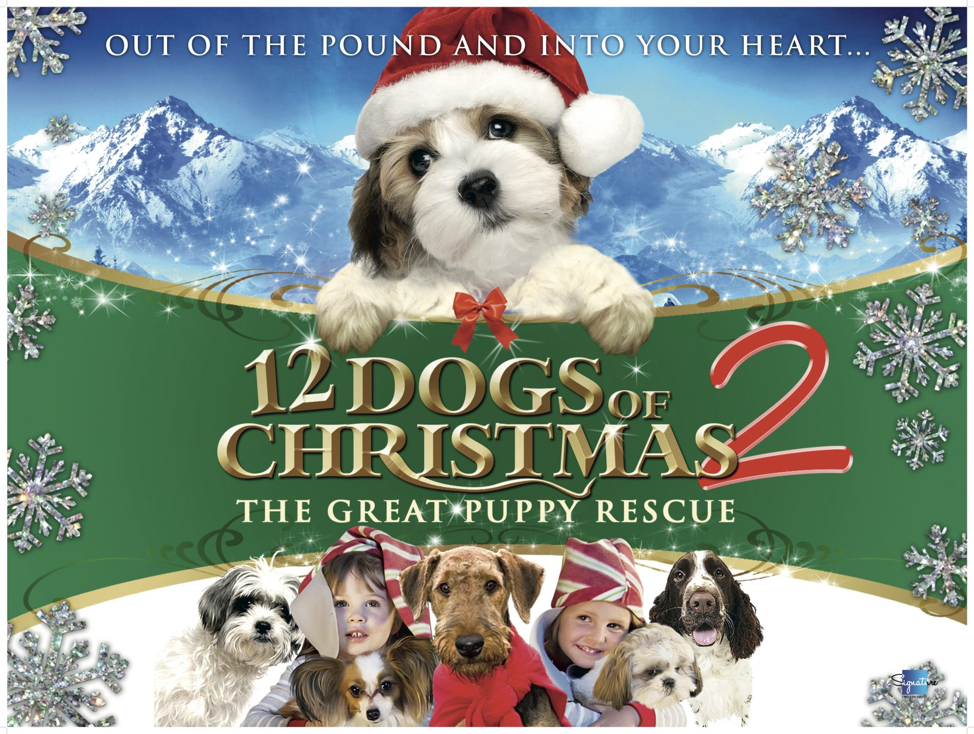 12 Dogs Of Christmas.Win A Family Ticket To The Exclusive Christmas Screening Of