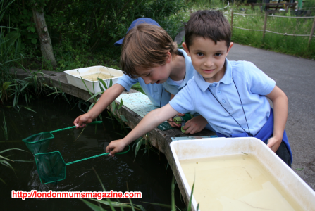 Easter half term holidays at the WWT London Wetland Centre child fishing