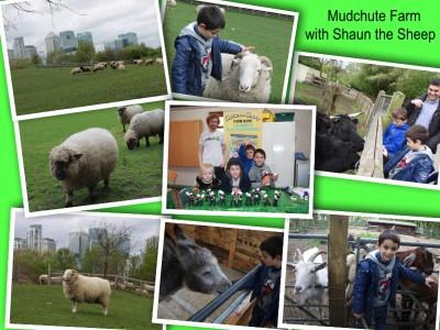 Mudchute farm shaun the sheep collage 1