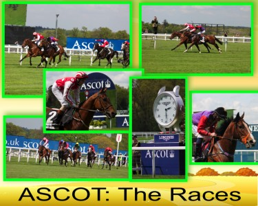Ascot races collage