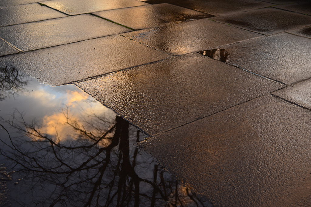 rain on pavement