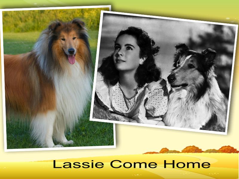 lassie come home film