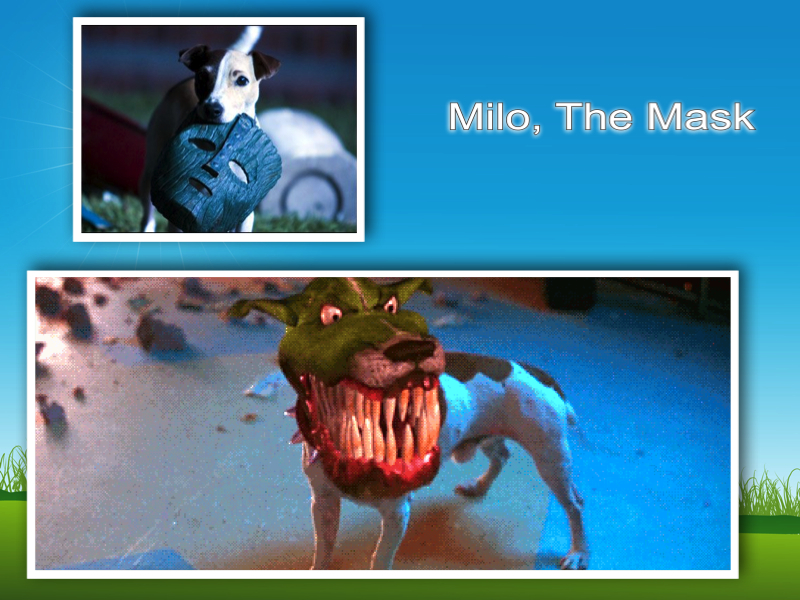 milo the dog the mask film