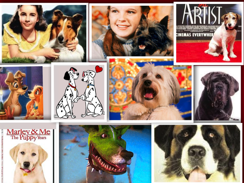 top dog film stars in movie history collage