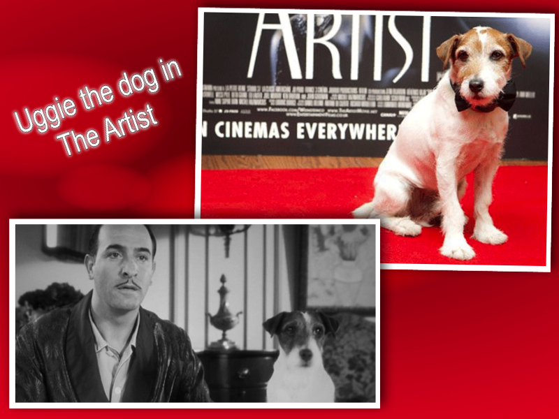 uggie the dog in the artist collage