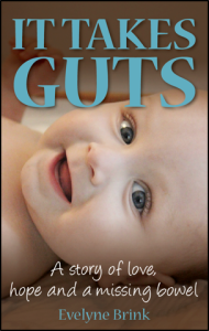 guest blogger post Evelyne Brink - Book Cover