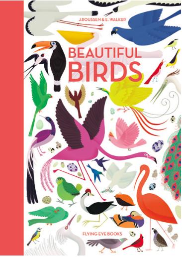 book Beautiful Birds Jacket low res
