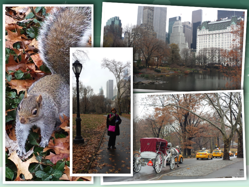 New York Central Park collage