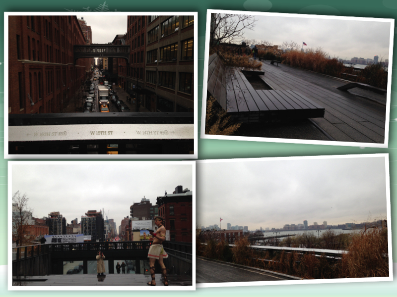 New York Chelsea High Line collage