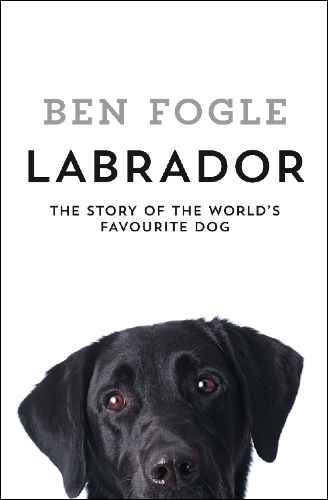 Labrador cover