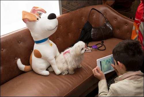 The Secret Life of Pets Kevin Hart London Mums magazine 100
