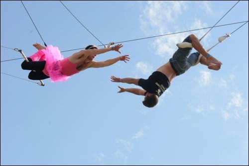 BST Hyde Park Gorilla Circus