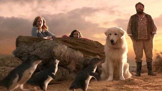 dogs in films Oddball and the Penguins 2