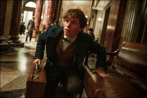 Fantastic Beasts and Where to Find Them FB-01108A