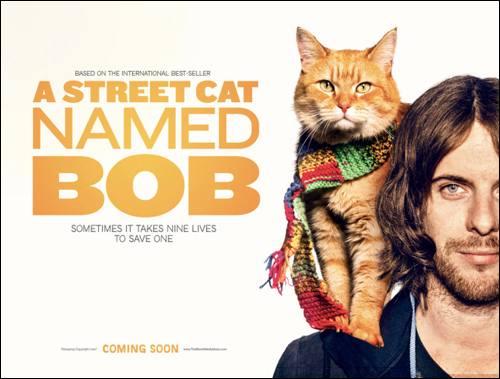 adam-rolston-a-street-cat-named-bob-teaser-poster-com