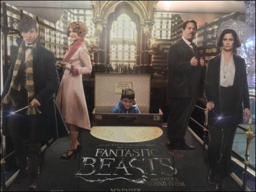 fantastic-beasts-screening-diego-3-photo