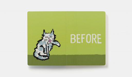 book before & after cat 1